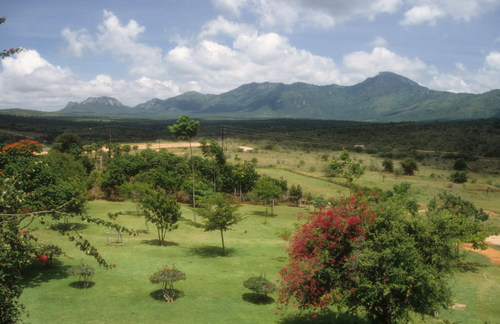 Unravelling the Marvel that is Taita Hills