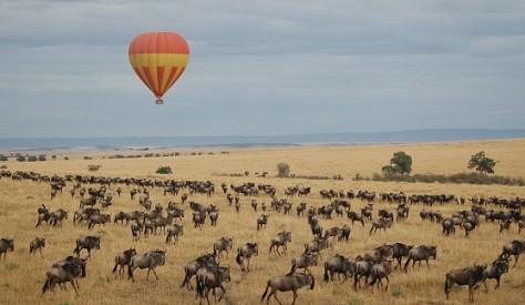 balloonsafarisovermigrationmasaimara