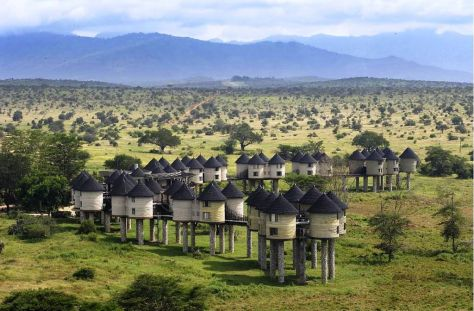 sarova-salt-lick-game-lodge-n1-tsavo-national-park-west-kenya+1152_12767641830-tpfil02aw-21811