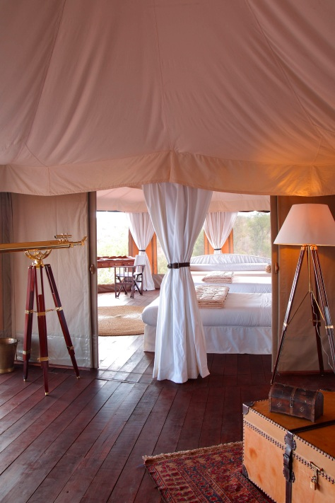 bedroom2 - Simba