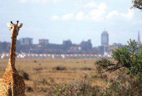 Nairobi-Background