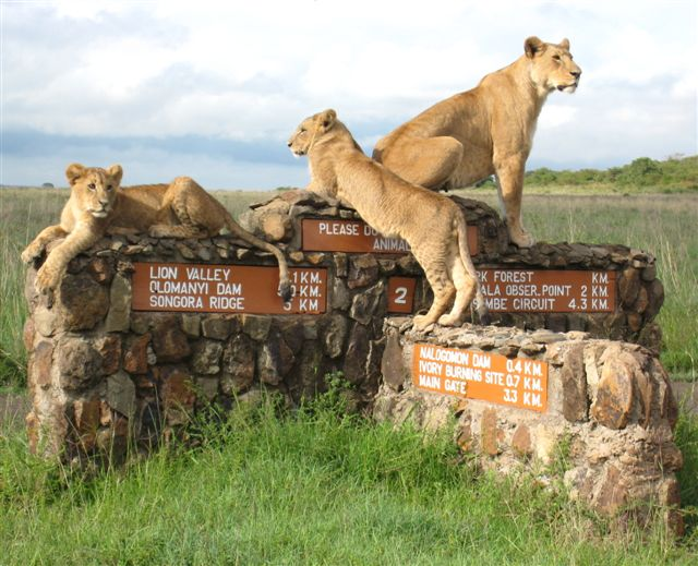 nairobi-park