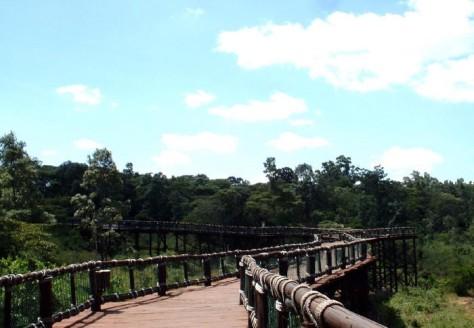 nairobi-safari-walk