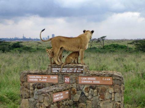 park-Nairobi