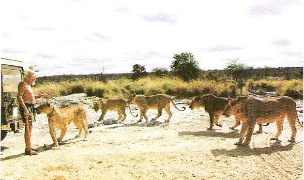 Honouring the Father of Lions; George Adamson
