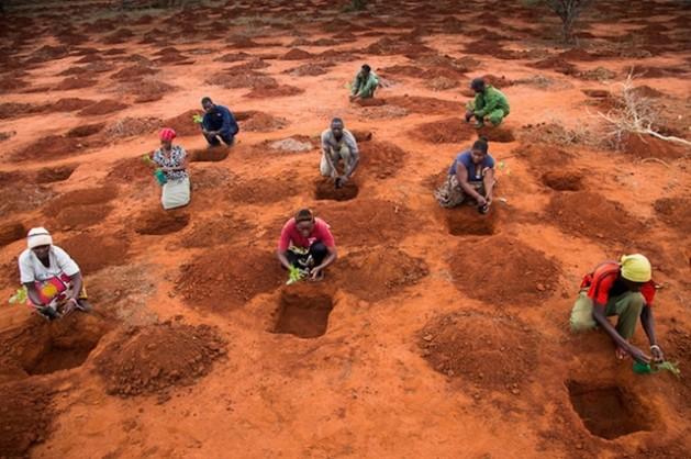 Why Wildlife Works: The Kasigau Corridor REDD+ Project