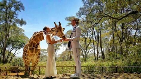 destination wedding zuru kenya 7
